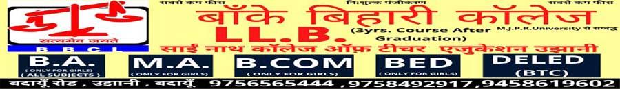 Logo Side Banner